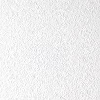 - Papier peint à peindre vinyle expansé sur intissé Wall Docto