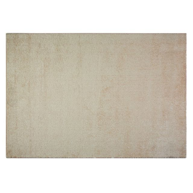 Tapis 160x230 achat vente de tapis pas cher - Tapis 160x230 pas cher ...
