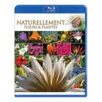 Antoine - Naturellement Fleurs & plantes