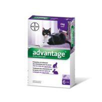 Advantage - 80 Anti-puces pour chats > 4 kg Boîte 6 Pipettes