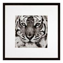 G&C Interiors - Photo d'art animal sauvage noir et blanc avec cadre bois et verre 40x40cm Wild