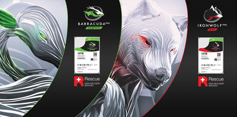 Seagate Barracuda Pro Ironwolf Pro