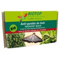 Biotop - Trichotop® Buxus contre la pyrale du buis
