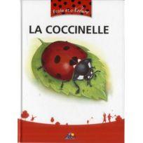 Aedis - La coccinelle