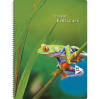 CARREFOUR - Cahier de travaux pratiques - 80 pages - 24 x 32 cm