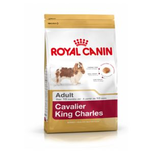 royal canin croquettes cavalier king charles pour chien. Black Bedroom Furniture Sets. Home Design Ideas