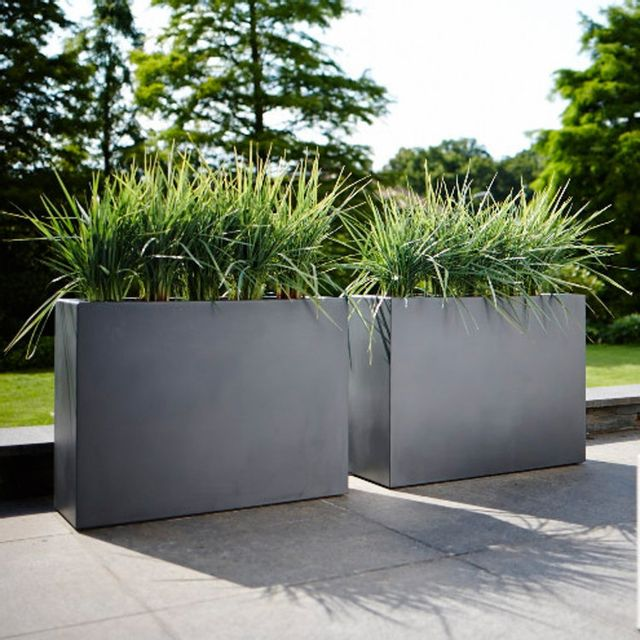 elho jardini re rectangle brise vue hauteur 59cm en. Black Bedroom Furniture Sets. Home Design Ideas