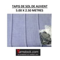 Reimo - Tapis de sol Caravane, Camping car, Arisol Pvc 5X 2.5m Bleu Gris