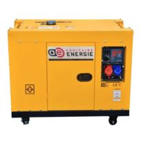 Aquitaine Energie - Groupe Electrogene Diesel 14KVA 400V Insonorise