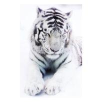 Artis - Toile imprimée Portrait Tiger - 65 x 97 cm