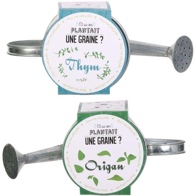 THE HOME DECO FACTORY Graines à planter aromates avec arrosoirs Lot de 2