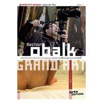 Arte Video - Grand'Art - Ingres - Saison 1 - Episode 2