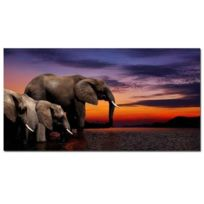 Aucune - Elephants Tableau deco 60x30cm