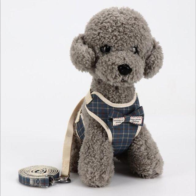 Wewoo Laisse pour chien Chaîne universelle de corde de traction de de d'animal familier de de doslaisse taille M bleu marine