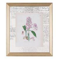 G&C Interiors - Cadre décoratif Fleurs et végétaux en bois Mdf et verre 30x35cm Botanicals