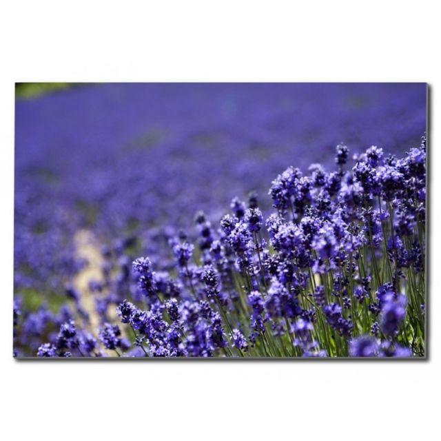 Deco Soon Tableau Fleur Lavande