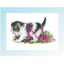 """Editions Lito - images """"les petit chat et les petits chiens"""" - boite de 100"""