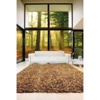 PAPILIO - Tapis Feuille Shaggy AUTOMNE Tapis Naturel par marron 160 x 230 cm