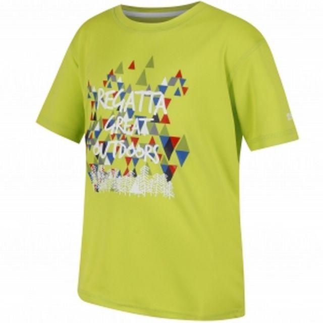 T-Shirt Enfant Regatta Alvarado Iv T