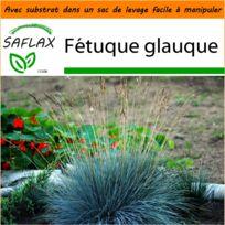 petite rocaille jardin - Achat petite rocaille jardin pas cher - Rue ...