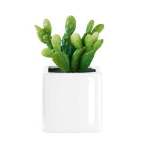 asa plante artificielle cactus ii avec cache pot en porcelaine succulents pas cher achat. Black Bedroom Furniture Sets. Home Design Ideas