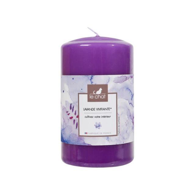 Chat Violet Bougie Parfum Le Colorée Parfumée Et D68xh115mm Lavade BeWrodQCxE