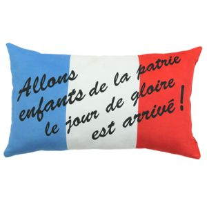 Mon Beau Tapis Coussin Drapeau France 50x30cm Multi Multicolore 50cm X 30cm Pas Cher