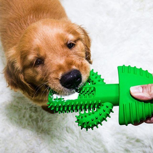 Wewoo Fournitures de jouet de chien de tige molaire de dents de nettoyage de brosse à d'animal familier