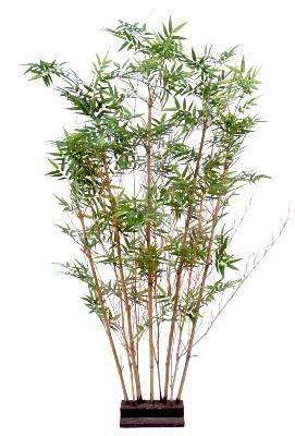 Artificielflower Haie artificielle Bambou Oriental - intérieur - 150cm vert - taille : 150cm
