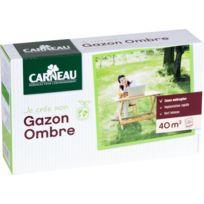 CARNEAU - Gazon pour jardin ombragé