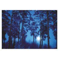 Heye - Puzzle 500 pièces Magic Forests : Binge Eliasson, Pleine lune