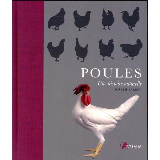 Artemis - poules, une histoire naturelle