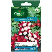 Vilmorin - Sachet graines Radis ronds en mélange
