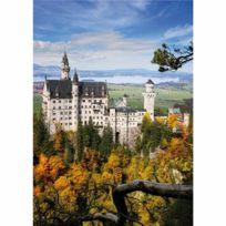 Dtoys - Puzzle 1000 pièces - Paysages : Château de Neuschwanstein, Allemagne