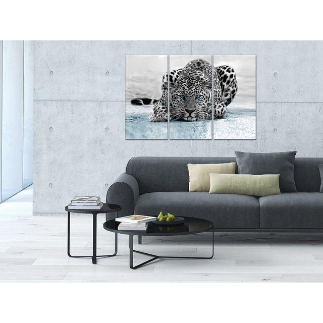 Declina - Triptyque toile animaux déco léopard à prix bas - Boutique 80cm x 120cm