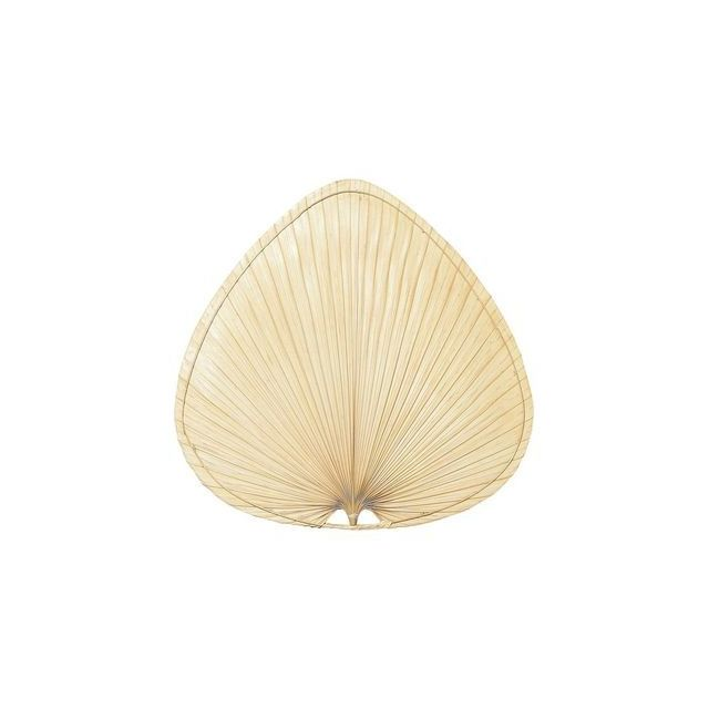 Boutica-design - Jeu de Pâles Palisade 110cm Palme Naturelle - Fanimation - Pap2