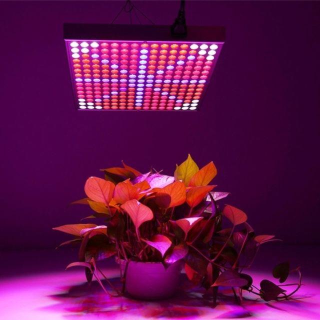 Wewoo Lampe 14W 225 Leds Smd 3528 Rbow Lumière Panneau Led Plant Croissance À Effet de Serre Aquarium Lumière, Ac 85-265V
