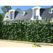 Euro Castor Green - Haie de bambou naturel avec support rigide