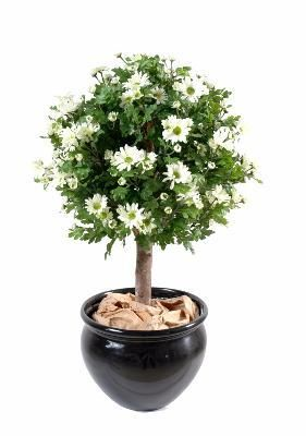Artificielflower Plante Artificielle Fleurie Anthemis Boule En Pot