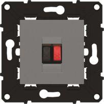 Arnould - Espace évolution Prise haut-parleur double avec enjoliveur magnésium a assembler
