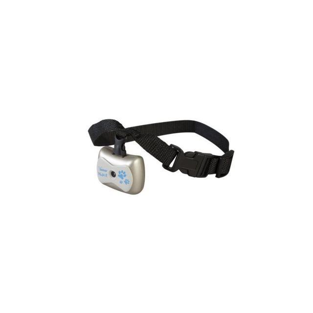 collier pour chien avec camera