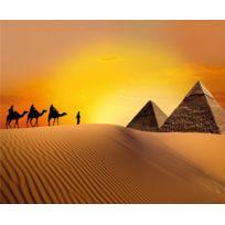 Bebe Gavroche - Caravan in desert, photo murale intissée, 360x270 cm, 4 parts