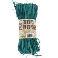 Ammi - Raphia végétal Vert 50 g