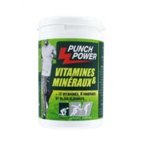 Punch Power - Vitamines & Minéraux 60 capsules pilulier
