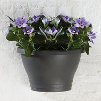 Elho - Pot de fleur à accrocher au mur en polypropylène Corsica