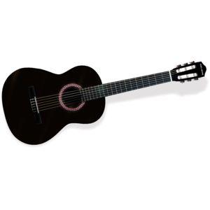 guitare acoustique delson