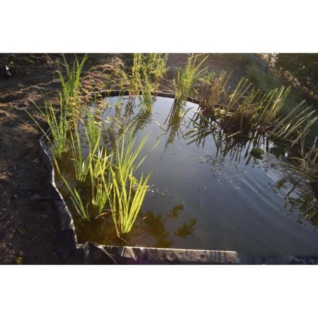 PAILLAGE - VOILE - PROTECTION CULTURE Bordure de jardin et bassin en PVC recyclé Borderfix - Epaisseur 7 mm - H 14 cm x