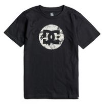 Dc - Tee Shirt Mc Cruiser Island Black Jr - Shoes