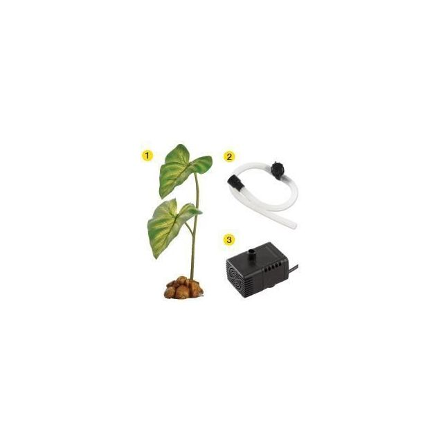 PERLE - BILLE DE VERRE - GRAVIER - ROCHER - PIERRE POUR AQUARIUM - TERRARIUM - VIVARIUM Water Dripper Plant Large