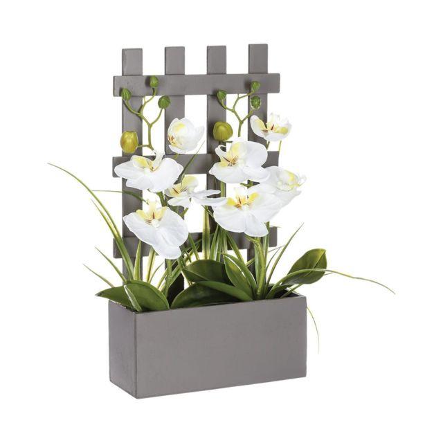 Atmosphera, Createur D\'INTERIEUR - Atmosphera - Orchidées ...
